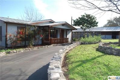 9982 Rebecca Creek Road, Spring Branch, TX 78070 - #: 342758