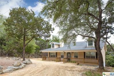 153 Sunrise Drive, Canyon Lake, TX 78133 - #: 349267
