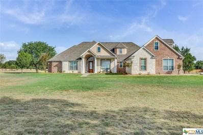 1268 Long Meadow, Salado, TX 76571 - #: 358059