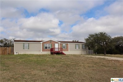 720 Morningwood, San Marcos, TX 78666 - #: 358646