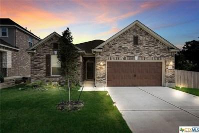 206 Hunters Hill Drive, San Marcos, TX 78666 - #: 359320