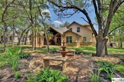 10879 Stinnett Mill Road, Salado, TX 76571 - #: 368907