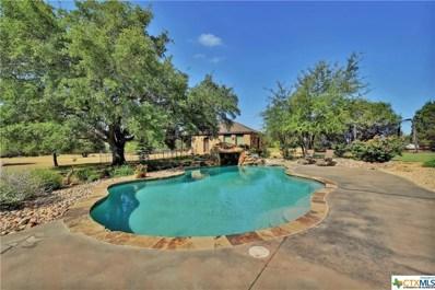 1387 Hidden Springs, Salado, TX 76571 - #: 371593