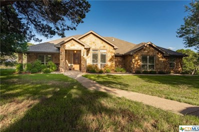 591 County Road 323, Gatesville, TX 76528 - #: 376536