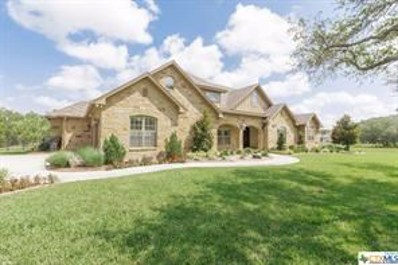 18 Post Oak Branch, Inez, TX 77968 - #: 381107