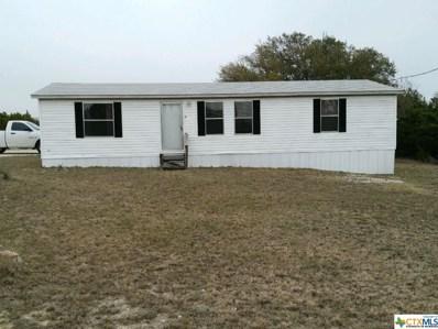 364 Apache Street, Kempner, TX 76539 - #: 381257