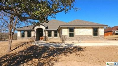1064 County Road 3150, Kempner, TX 76539 - #: 384918