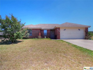705 Jorgette Drive, Harker Heights, TX 76548 - #: 387644
