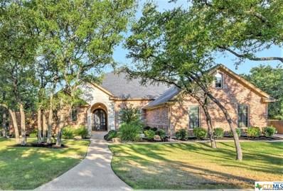 16 Lago Verde Lane, Belton, TX 76513 - #: 389106
