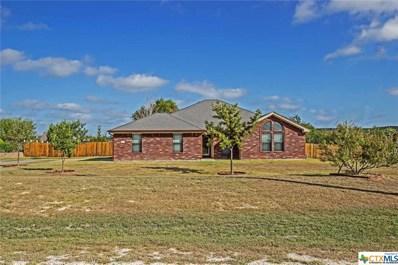 594 County Road 4711, Kempner, TX 76539 - #: 390845