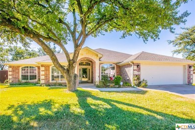 308 Wrought Iron Drive, Harker Heights, TX 76548 - #: 390855