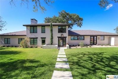 115 Lakeview Drive, Belton, TX 76513 - #: 393053