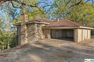 10002 Hartrick Bluff Road, Temple, TX 76502 - #: 393120