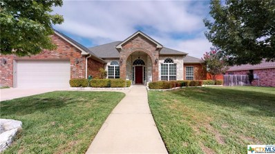 2203 Grizzly Trail, Harker Heights, TX 76548 - #: 393460