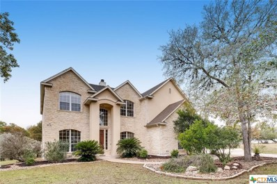 8510 Raintree Woods Drive, Fair Oaks Ranch, TX 78015 - #: 393535