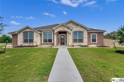 5253 Barzona Drive, Belton, TX 76513 - #: 394675