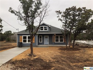 972 Rimrock Cove, Spring Branch, TX 78070 - #: 399976