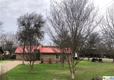 331 Woodland Trail, Belton, TX 76513 - #: 400092