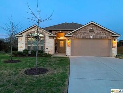 5201 Cicero Drive, Belton, TX 76513 - #: 402453