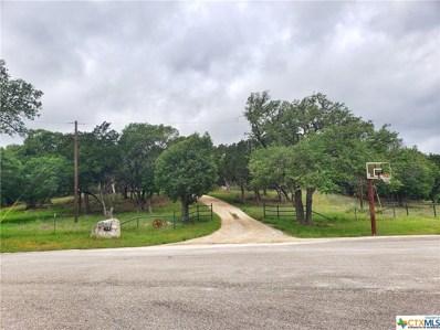 933 County Road 323, Gatesville, TX 76528 - #: 440566