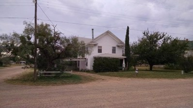 311 S Church Street, Roby, TX 79543 - #: 13048320