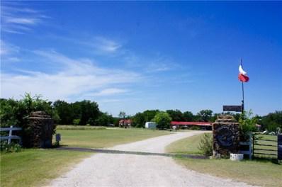 9091 County Road 456, Brownwood, TX 76801 - #: 13634140