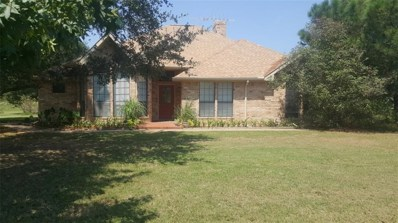 1400 Vz County Road 3427, Wills Point, TX 75169 - #: 13663296