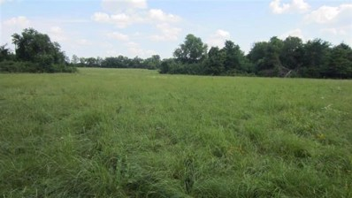County Road 15160, Deport, TX 75435 - #: 13746036