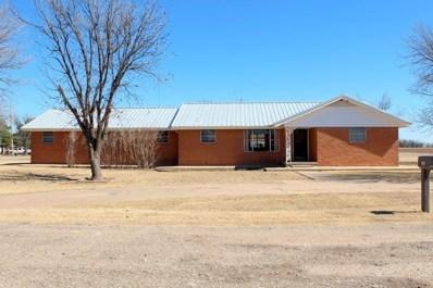404 S Hilmar Street, Weinert, TX 76388 - #: 13786995