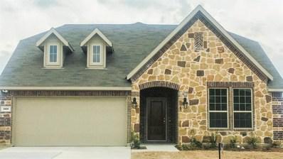 560 Winnetka, Oak Point, TX 75068 - #: 13789321