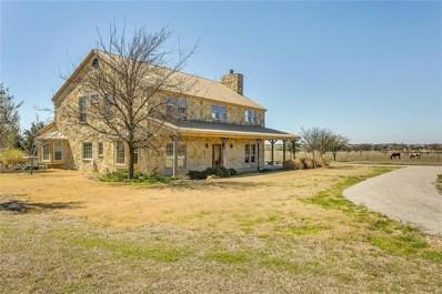 7301 County Road 912, Joshua, TX 76058 - #: 13789384