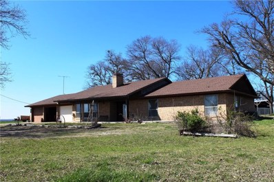 1111 Hwy 902, Howe, TX 75459 - #: 13801012