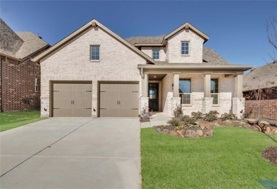 313 Village Creek Drive, McKinney, TX 75071 - #: 13824262