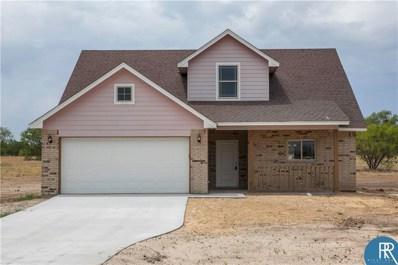 310 Salt Creek Drive, Early, TX 76802 - #: 13829055