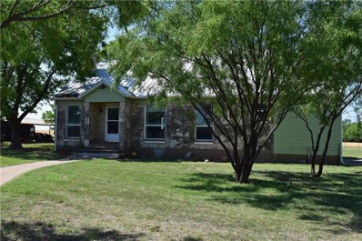 1117 County Road 355, Winters, TX 79567 - #: 13851470