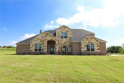 110 Signature Court, Brock, TX 76087 - #: 13860982
