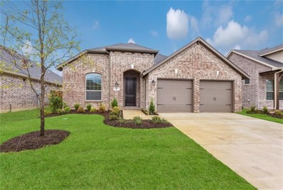 8017 Deep Water Cove, McKinney, TX 75071 - #: 13877964