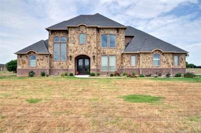 2029 Blue Ridge Drive, Cedar Hill, TX 75104 - #: 13886957