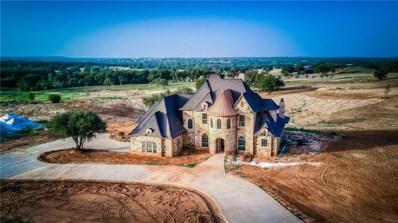 220 Reata Ranch Drive, Peaster, TX 76088 - #: 13891901