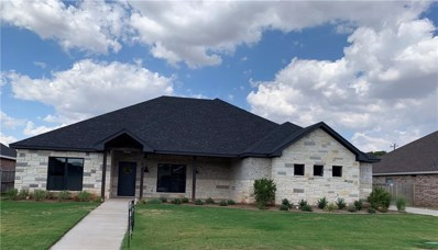 6718 Summerwood Trail, Abilene, TX 79606 - #: 13920589