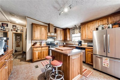 10790 County Road 670, Blue Ridge, TX 75424 - #: 13923825