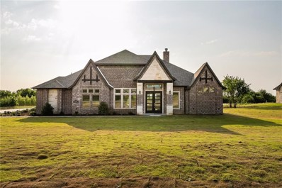 333 Kenyon Court, Granbury, TX 76049 - #: 13925335