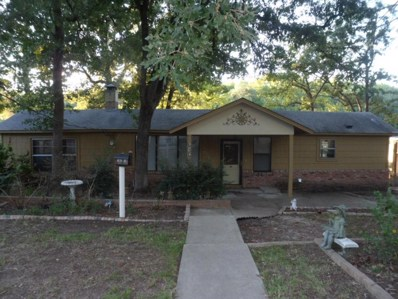 646 County Road 3235, Quitman, TX 75783 - #: 13926786
