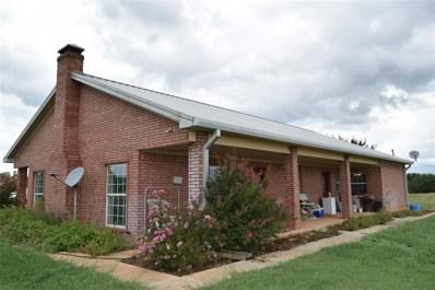 2643 County Road 419, Novice, TX 79538 - #: 13931209