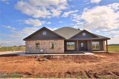 102 Ashley Drive, Tuscola, TX 79562 - #: 13940583