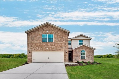 6000 Royal Gorge Drive, Fort Worth, TX 76179 - #: 13941551