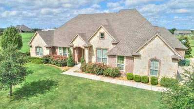 117 Ranch Hand Lane, Aledo, TX 76008 - #: 13943925
