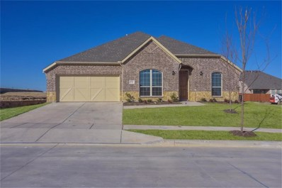 15100 Belclaire Avenue, Aledo, TX 76008 - #: 13949004
