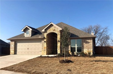 6128 Dunnlevy Drive, Fort Worth, TX 76179 - #: 13950633