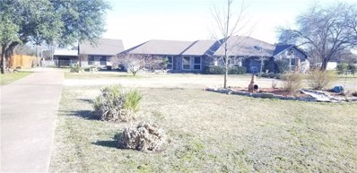 205 Willow Crest Drive, Willow Park, TX 76087 - #: 13954025